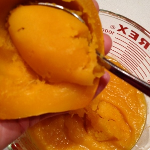 Measuring the squash/pumpkin puree